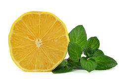 Lemon with mint leaves Stock Photography