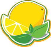 Lemon with mint leaves. Vector illustration of a lemon and a slice of lemon with mint leaves Royalty Free Stock Images