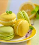 Lemon and mint macaroons Stock Photo