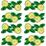Lemon  and mint vector seamless pattern. Royalty Free Stock Photo
