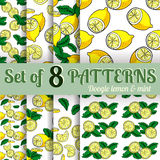 Lemon  and mint vector seamless pattern. Stock Images
