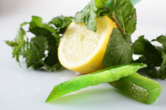 Lemon with mint on white background Royalty Free Stock Photography