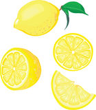 Lemon mix. Vector illustration of lemon mix Stock Images