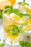 Lemon mojito cocktail with fresh mint, cold refreshing summer drink Stock Photos