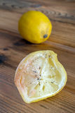 Lemon with mold Stock Images