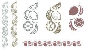 Lemon monochrome ornament Stock Images