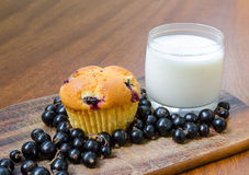 Lemon muffin with cherries, blackcurrant and a glass of milk. Lemon cherry muffin with a glass of milk and blackcurrant on a wooden table Royalty Free Stock Images