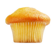 Lemon Muffin Stock Images