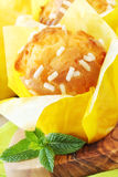 Lemon muffins Royalty Free Stock Photography