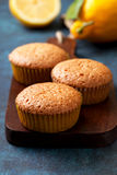 Lemon muffins Royalty Free Stock Image