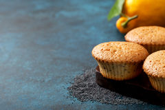 Lemon muffins Royalty Free Stock Photos