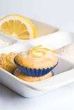 Lemon muffins in white tray Royalty Free Stock Image