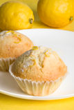 Lemon muffins on yellow. Close-up of two home made lemon muffins on white dish on yellow background. Two lemons are visible as well stock image