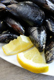 Lemon and mussels raw Stock Photos