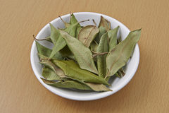 Lemon Myrtle dried Leaves Royalty Free Stock Photos