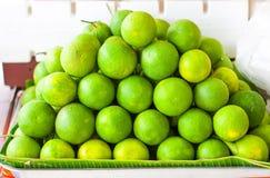 Lemon and orange. The lemon is a small evergreen tree native to asia, ans the tree's ellipsoidal fruit Stock Image