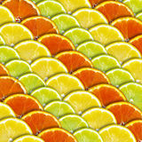 Lemon and Orange Background Royalty Free Stock Photo