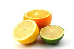 Lemon orange and citron fruit Royalty Free Stock Images