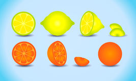 Lemon orange citrus set Royalty Free Stock Photography