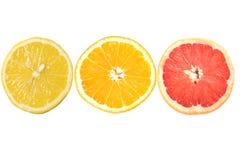 Lemon orange and grapefruit Royalty Free Stock Image