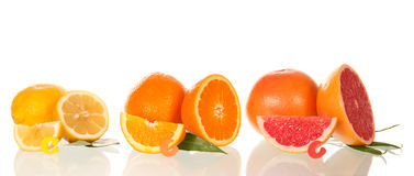 Lemon, orange and grapefruit in a section Royalty Free Stock Photo