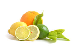 Lemon, orange and lime. Fresh lemon, orange and lime on white background stock image
