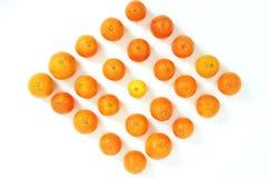 Lemon and Orange matrix Stock Images