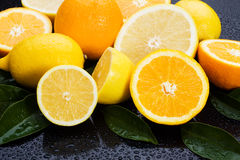 Lemon, orange nad grapefruit Royalty Free Stock Images