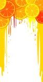 Lemon and orange slices Royalty Free Stock Photography