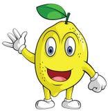Lemon Orange Smile Stock Image