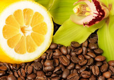Lemon orchid and coffee beans Royalty Free Stock Images