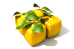 Lemon pack Royalty Free Stock Photos
