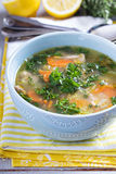 Lemon pasta chicken soup Royalty Free Stock Photography