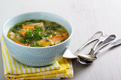 Lemon pasta chicken soup Royalty Free Stock Images
