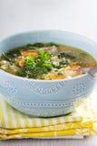 Lemon pasta chicken soup Stock Photos