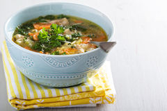 Lemon pasta chicken soup Stock Images
