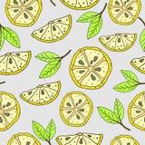 Lemon pattern Royalty Free Stock Photography