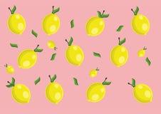 Lemon pattern. Vector lemon pattern and background Stock Photos