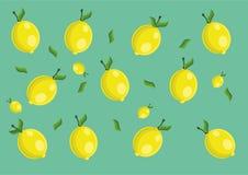 Lemon pattern. Vector lemon pattern and background Stock Image