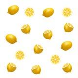 Lemon pattern on white background. Stock Image