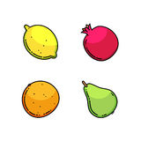Lemon, pear, mandarin and garnet set isolated on white. Fruit flat line  illustration. Lemon, pear, mandarin and garnet set isolated on white Stock Images