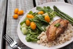 Lemon Pepper Chicken with Rice horizontal shot Stock Photos