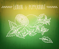 Lemon and peppermint Royalty Free Stock Photography