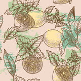 Lemon and peppermint seamless Royalty Free Stock Photos