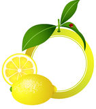 Lemon Photo Frame Royalty Free Stock Photography