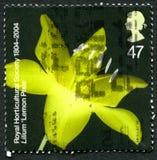 Lemon Pixie UK Postage Stamp Stock Photo