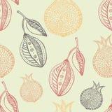 Lemon and pomegranate seamless hand drawn pattern Royalty Free Stock Photography