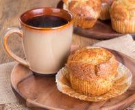 Lemon Poppy Seed Muffin Stock Image