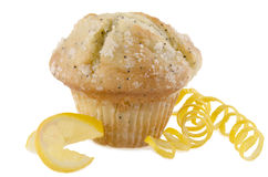 Lemon poppy seed muffin stock images