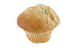 Lemon poppy seed muffin Royalty Free Stock Photos